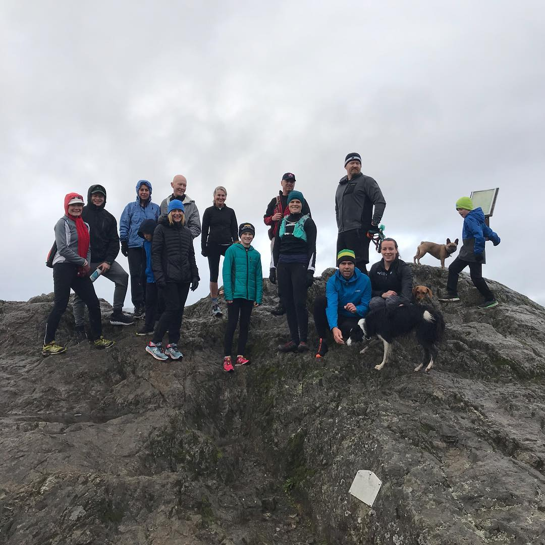 This is a photo of a group of people and dogs at the peak of a mountain with trees and a foggy landscape behind them.